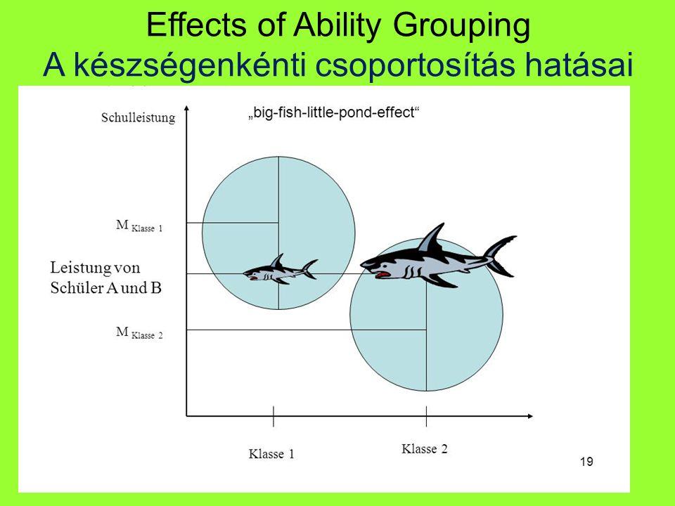Effects of Ability Grouping A készségenkénti csoportosítás hatásai