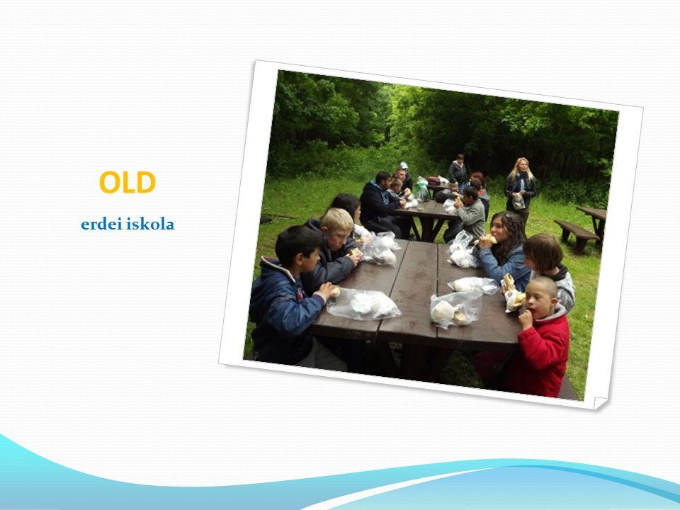 C.2 Egészségnap szervezése az egészséges táplálkozással összefüggésben Célcsoport: Általános Iskola 1-8 évfolyam a) Mohács : 100 tanuló b) Old: 20 tanuló Az egészséges életmóddal kapcsolatos ismeretek bővítése céljából egészségnapot szervezünk öt színtéren, különböző képesség, és korcsoportban.