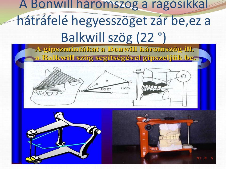 A Bonwill háromszög a rágósíkkal hátráfelé hegyesszöget zár be,ez a Balkwill szög (22 °)