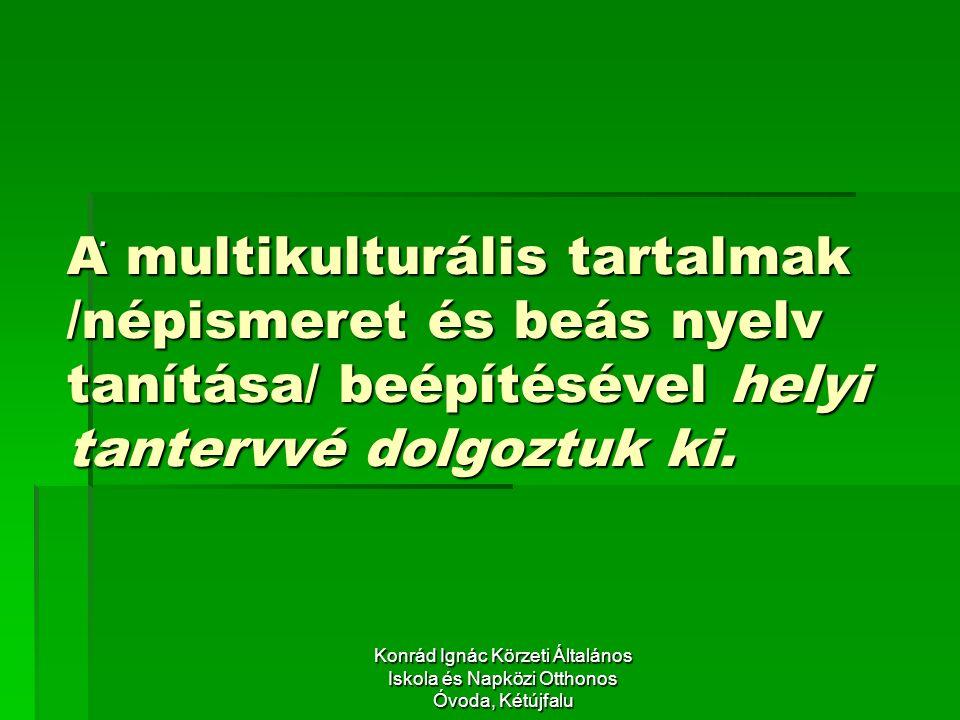 A multikulturális tartalmak /népismeret és beás nyelv tanítása/ beépítésével helyi tantervvé dolgoztuk ki..