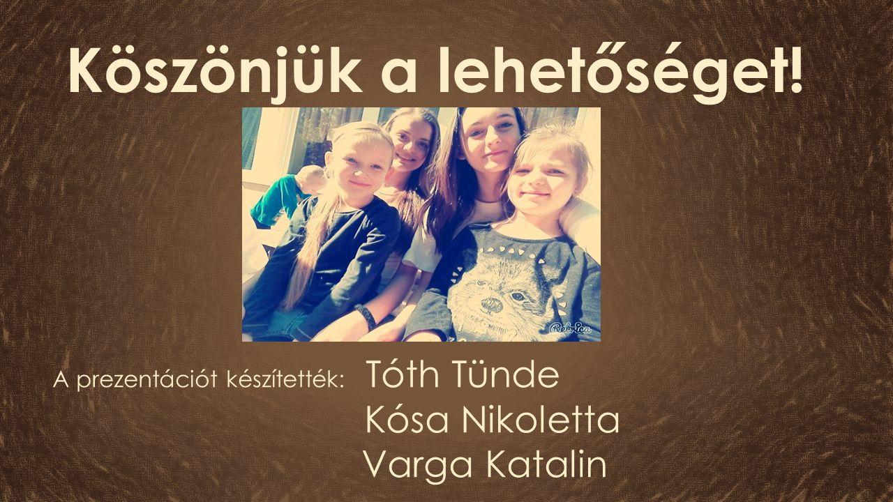A prezentációt készítették: Tóth Tünde Kósa Nikoletta Varga Katalin Köszönjük a lehetőséget!