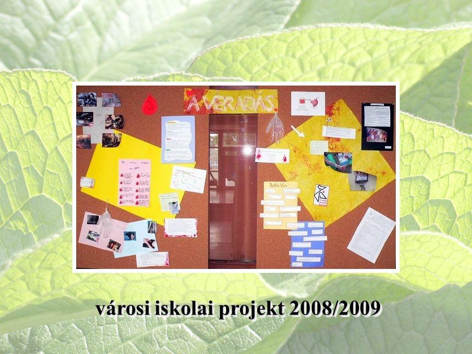 városi iskolai projekt 2008/2009