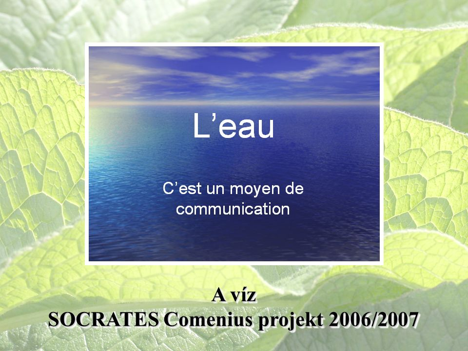 A víz SOCRATES Comenius projekt 2006/2007 A víz SOCRATES Comenius projekt 2006/2007