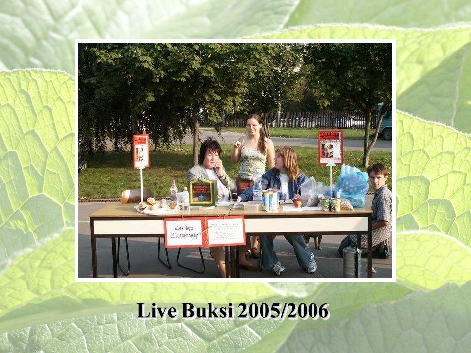 Live Buksi 2005/2006