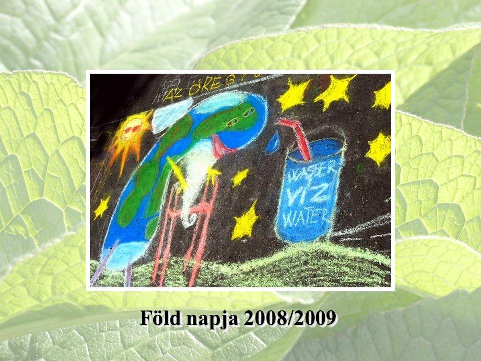 Föld napja 2008/2009
