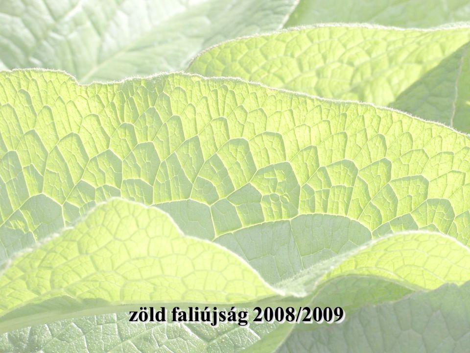zöld faliújság 2008/2009