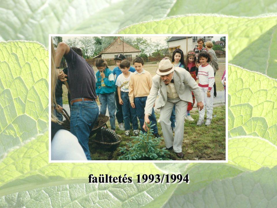 faültetés 1993/1994