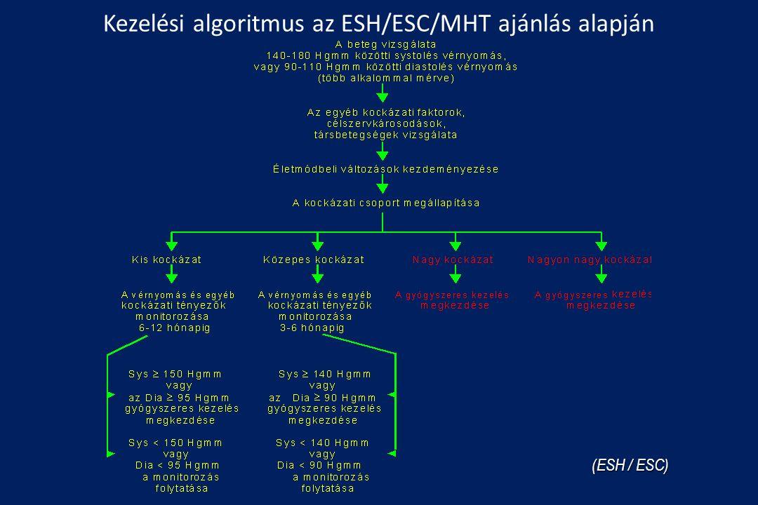Kezelési algoritmus az ESH/ESC/MHT ajánlás alapján (ESH / ESC)