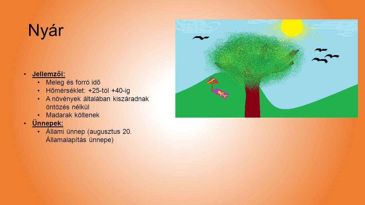 Nyár Jellemzői: Meleg és forró idő Hőmérséklet: +25-tól +40-ig A növények általában kiszáradnak öntözés nélkül Madarak költenek Ünnepek: Állami ünnep