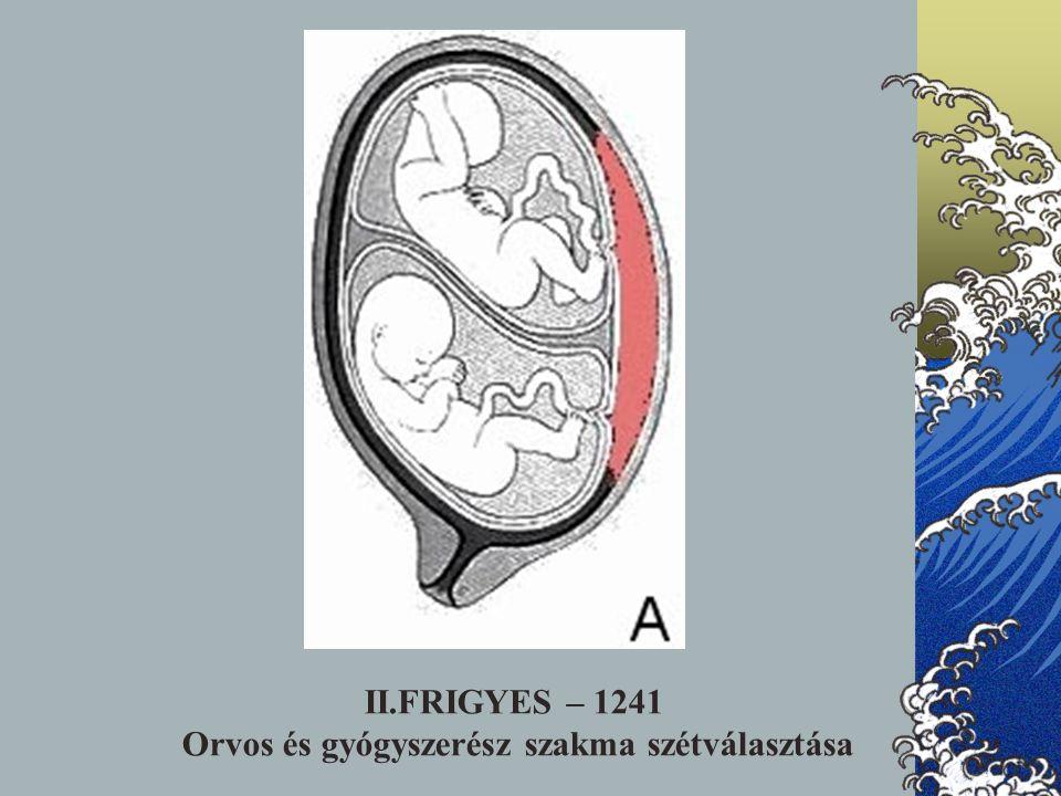 II.FRIGYES – 1241 Orvos és gyógyszerész szakma szétválasztása