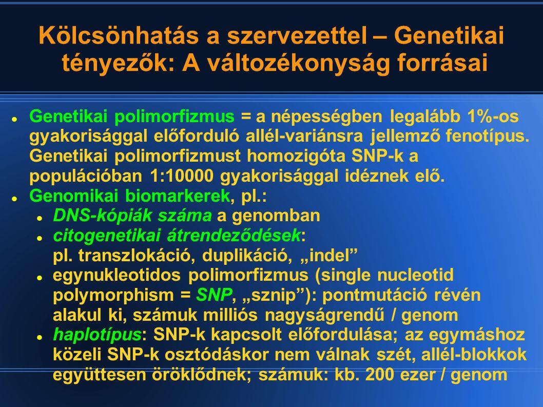 Kölcsönhatás a szervezettel – Genetikai tényezők: A változékonyság forrásai Genetikai polimorfizmus = a népességben legalább 1%-os gyakorisággal előfo