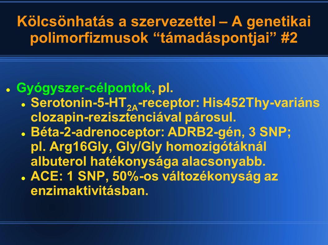 """Kölcsönhatás a szervezettel – A genetikai polimorfizmusok """"támadáspontjai"""" #2 Gyógyszer-célpontok, pl. Serotonin-5-HT 2A -receptor: His452Thy-variáns"""