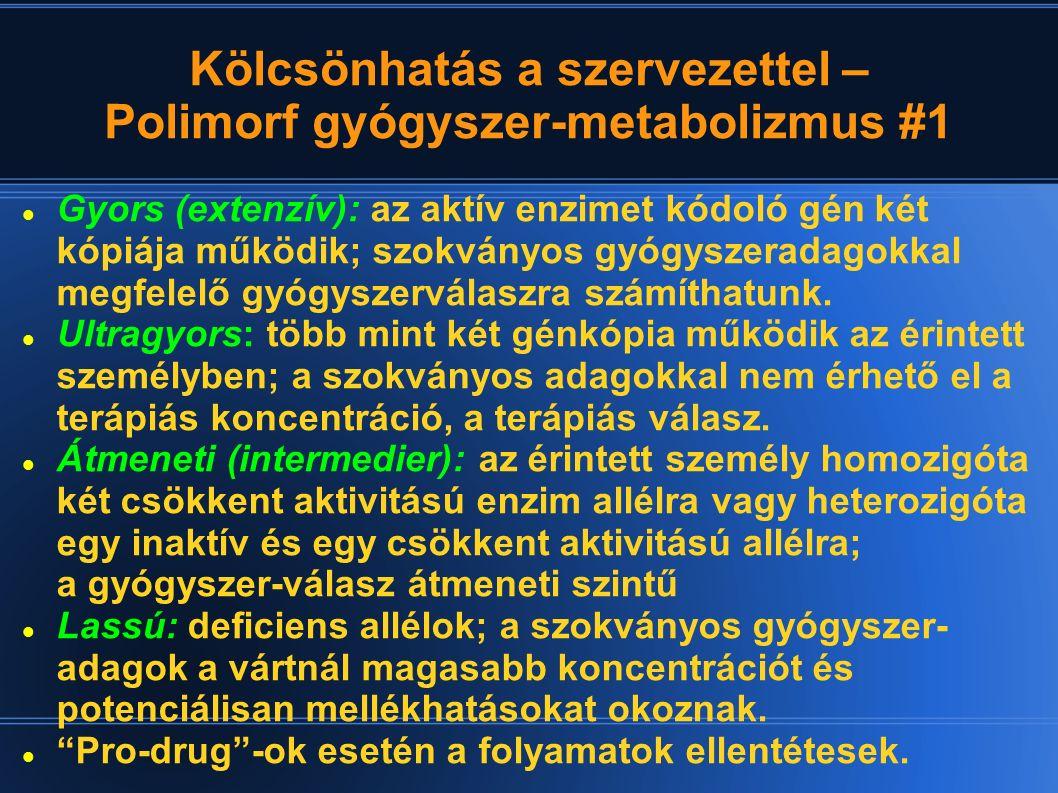 Kölcsönhatás a szervezettel – Polimorf gyógyszer-metabolizmus #1 Gyors (extenzív): az aktív enzimet kódoló gén két kópiája működik; szokványos gyógysz