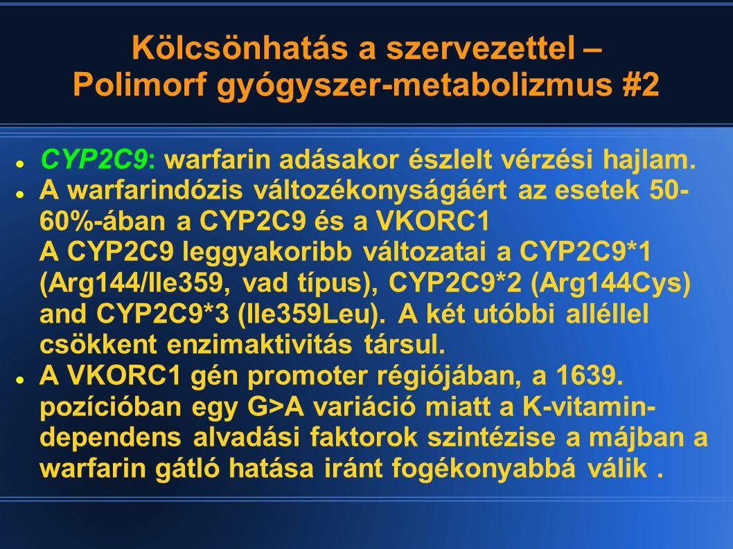 Kölcsönhatás a szervezettel – Polimorf gyógyszer-metabolizmus #2 CYP2C9: warfarin adásakor észlelt vérzési hajlam. A warfarindózis változékonyságáért