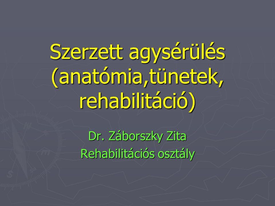 Szerzett agysérülés (anatómia,tünetek, rehabilitáció) Dr. Záborszky Zita Rehabilitációs osztály
