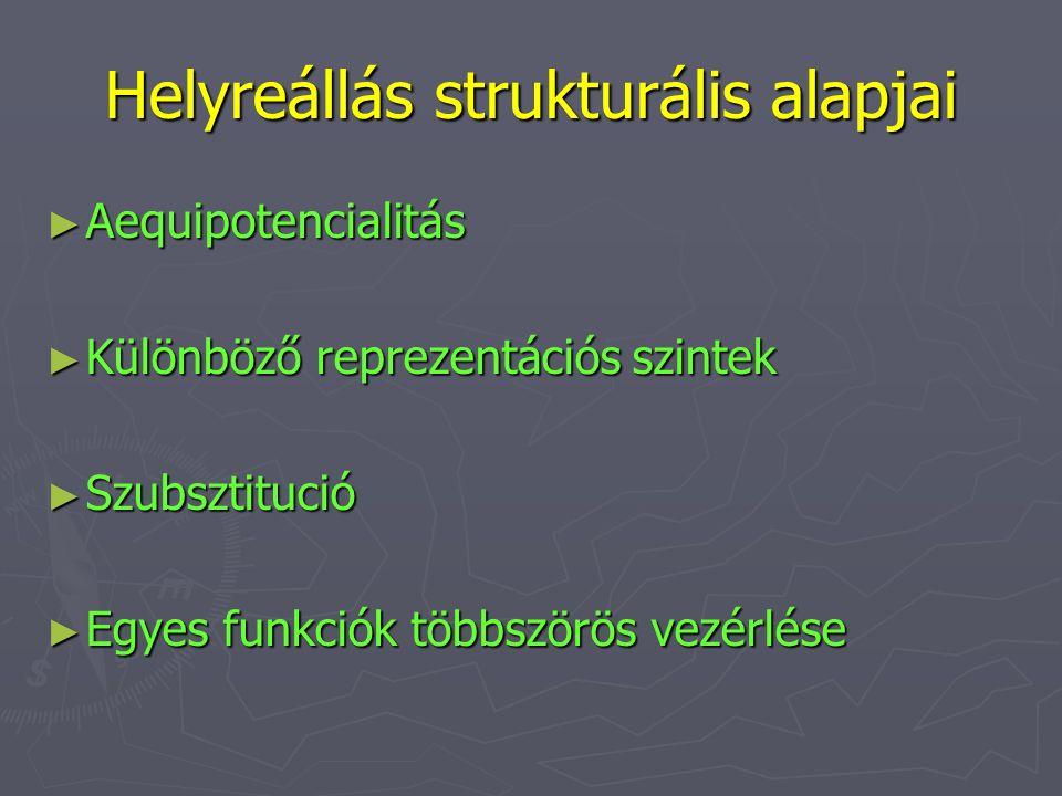 Helyreállás strukturális alapjai ► Aequipotencialitás ► Különböző reprezentációs szintek ► Szubsztitució ► Egyes funkciók többszörös vezérlése