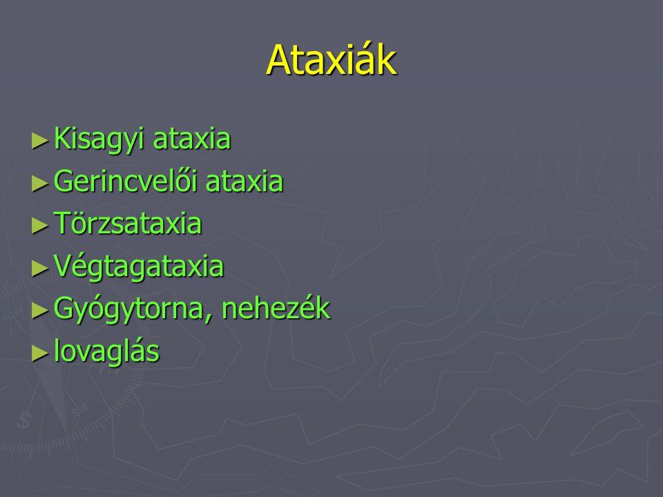 Ataxiák ► Kisagyi ataxia ► Gerincvelői ataxia ► Törzsataxia ► Végtagataxia ► Gyógytorna, nehezék ► lovaglás