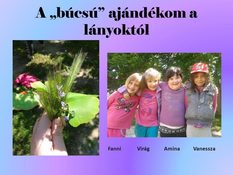"""A """"búcsú ajándékom a lányoktól Fanni Virág Amina Vanessza"""