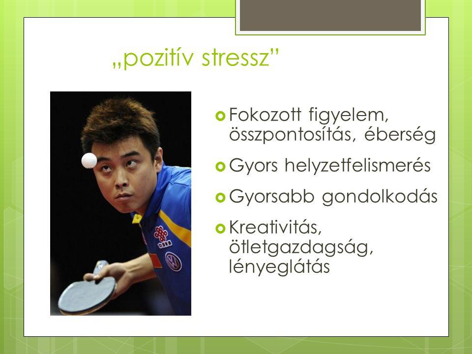 """""""pozitív stressz  Fokozott figyelem, összpontosítás, éberség  Gyors helyzetfelismerés  Gyorsabb gondolkodás  Kreativitás, ötletgazdagság, lényeglátás"""