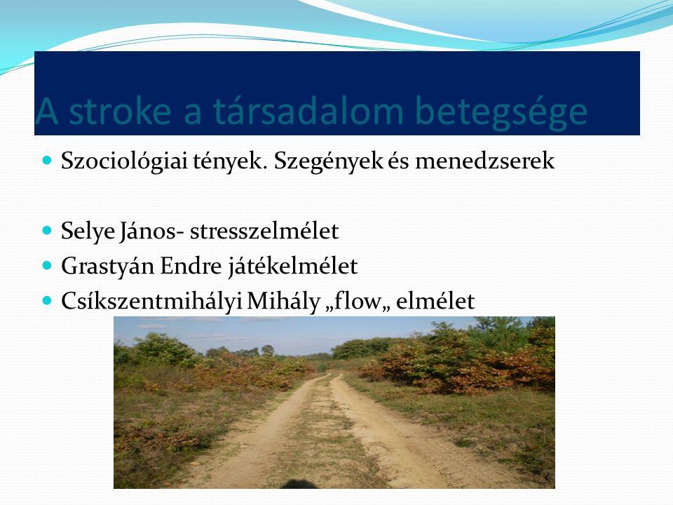 A stroke a társadalom betegsége Szociológiai tények.