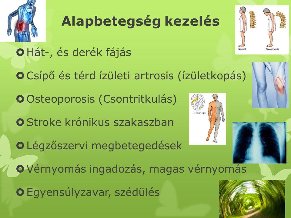 Alapbetegség kezelés  Hát-, és derék fájás  Csípő és térd ízületi artrosis (ízületkopás)  Osteoporosis (Csontritkulás)  Stroke krónikus szakaszban