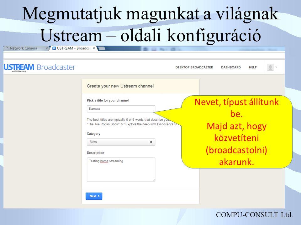 COMPU-CONSULT Ltd.