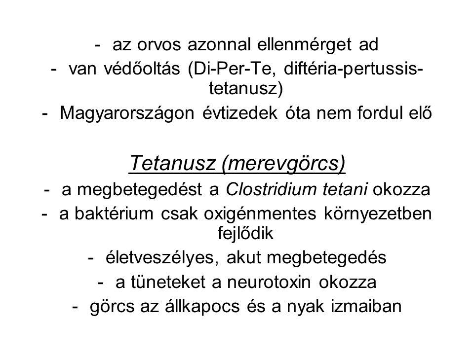 -az orvos azonnal ellenmérget ad -van védőoltás (Di-Per-Te, diftéria-pertussis- tetanusz) -Magyarországon évtizedek óta nem fordul elő Tetanusz (merevgörcs) -a megbetegedést a Clostridium tetani okozza -a baktérium csak oxigénmentes környezetben fejlődik -életveszélyes, akut megbetegedés -a tüneteket a neurotoxin okozza -görcs az állkapocs és a nyak izmaiban