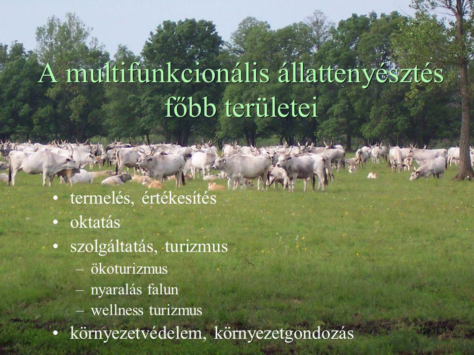 A multifunkcionális állattenyésztés főbb területei termelés, értékesítés oktatás szolgáltatás, turizmus –ökoturizmus –nyaralás falun –wellness turizmus környezetvédelem, környezetgondozás