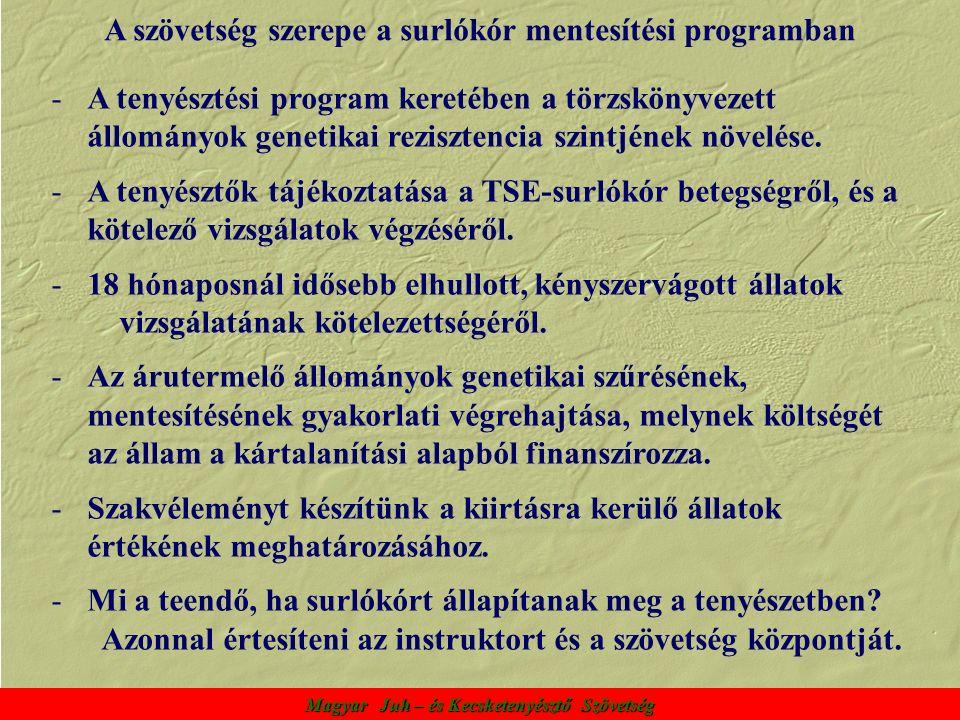 Magyar Juh – és Kecsketenyésztő Szövetség A szövetség szerepe a surlókór mentesítési programban -A tenyésztési program keretében a törzskönyvezett állományok genetikai rezisztencia szintjének növelése.