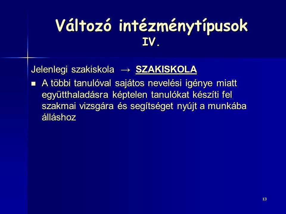Változó intézménytípusok IV.