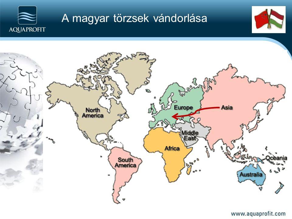 A magyar törzsek vándorlása