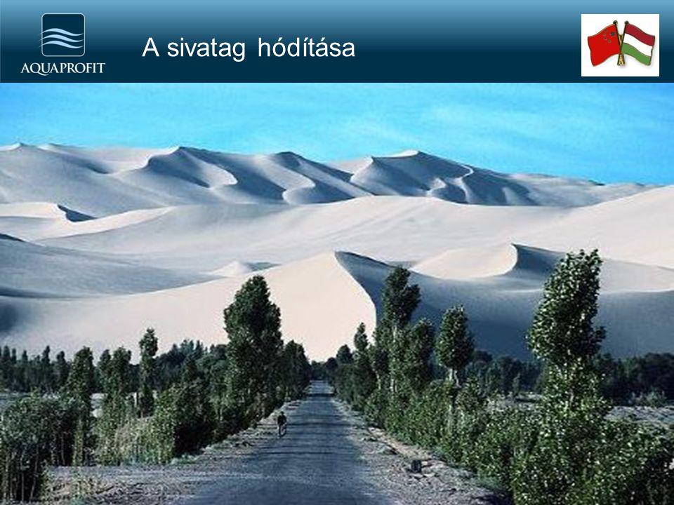 A sivatag hódítása