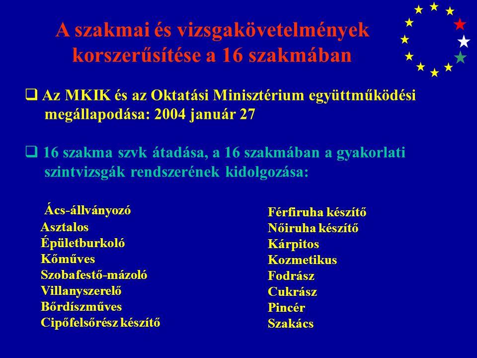 A szakmai és vizsgakövetelmények korszerűsítése a 16 szakmában  Az MKIK és az Oktatási Minisztérium együttműködési megállapodása: 2004 január 27  16 szakma szvk átadása, a 16 szakmában a gyakorlati szintvizsgák rendszerének kidolgozása: Ács-állványozó Asztalos Épületburkoló Kőműves Szobafestő-mázoló Villanyszerelő Bőrdíszműves Cipőfelsőrész készítő Férfiruha készítő Nőiruha készítő Kárpitos Kozmetikus Fodrász Cukrász Pincér Szakács