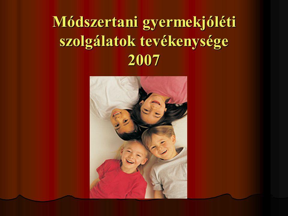 Módszertani gyermekjóléti szolgálatok tevékenysége 2007