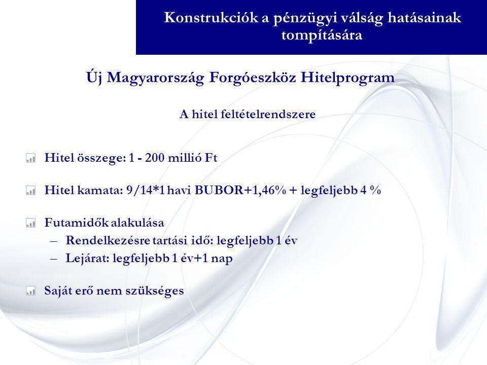 A hitel feltételrendszere Hitel összege: 1 - 200 millió Ft Hitel kamata: 9/14*1 havi BUBOR+1,46% + legfeljebb 4 % Futamidők alakulása –Rendelkezésre tartási idő: legfeljebb 1 év –Lejárat: legfeljebb 1 év+1 nap Saját erő nem szükséges Új Magyarország Forgóeszköz Hitelprogram Konstrukciók a pénzügyi válság hatásainak tompítására