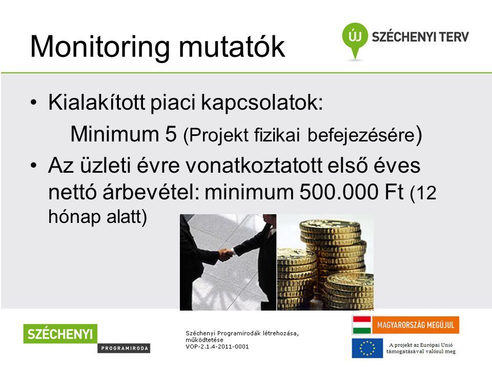 Monitoring mutatók Kialakított piaci kapcsolatok: Minimum 5 (Projekt fizikai befejezésére ) Az üzleti évre vonatkoztatott első éves nettó árbevétel: m