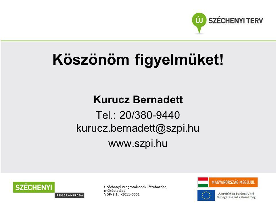 Köszönöm figyelmüket! Kurucz Bernadett Tel.: 20/380-9440 kurucz.bernadett@szpi.hu www.szpi.hu