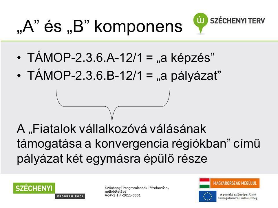 """""""A"""" és """"B"""" komponens TÁMOP-2.3.6.A-12/1 = """"a képzés"""" TÁMOP-2.3.6.B-12/1 = """"a pályázat"""" A """"Fiatalok vállalkozóvá válásának támogatása a konvergencia ré"""