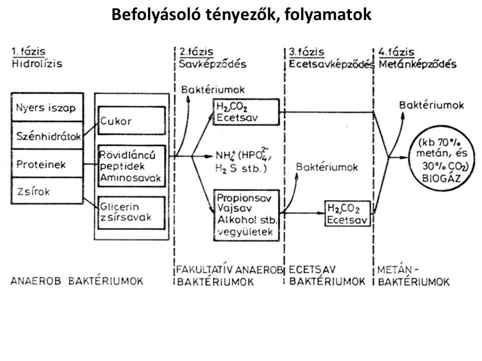 Folyamat 4 fő lépése: 1.Hidrolízises lépcső (nem metántermelő) -(1) Hidrolízis: nagy molekula tömegű szerves vegyületek tördelése kisebbekre -(2) Fermentáció: Illó savak keletkezése -(3) Ecetsav termelés 2.(4) Metántermelés A sorrend az egyes folyamatok egymástól való függését is jelzi, de a párhuzamosan végbemenő folyamatok és a sokféle mikroorganizmus miatt nem ilyen egyszerű.