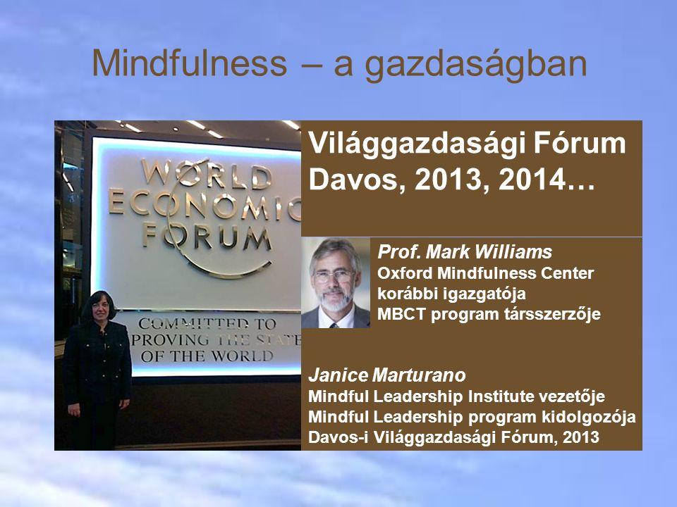Mindfulness – a gazdaságban Janice Marturano Mindful Leadership Institute vezetője Mindful Leadership program kidolgozója Davos-i Világgazdasági Fórum, 2013 Világgazdasági Fórum Davos, 2013, 2014… Prof.