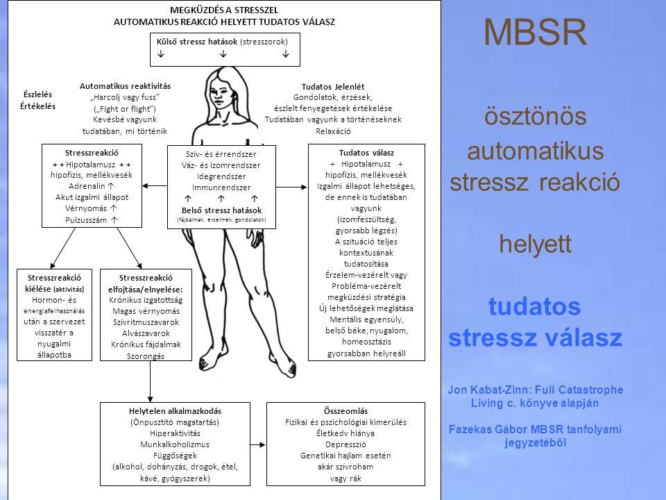 MBSR ösztönös automatikus stressz reakció helyett tudatos stressz válasz Jon Kabat-Zinn: Full Catastrophe Living c. könyve alapján Fazekas Gábor MBSR