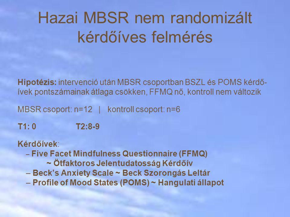 Hazai MBSR nem randomizált kérdőíves felmérés Hipotézis: intervenció után MBSR csoportban BSZL és POMS kérdő- ívek pontszámainak átlaga csökken, FFMQ nő, kontroll nem változik MBSR csoport: n=12 | kontroll csoport: n=6 T1: 0T2:8-9 Kérdőívek: – Five Facet Mindfulness Questionnaire (FFMQ) ~ Ötfaktoros Jelentudatosság Kérdőív – Beck's Anxiety Scale ~ Beck Szorongás Leltár – Profile of Mood States (POMS) ~ Hangulati állapot