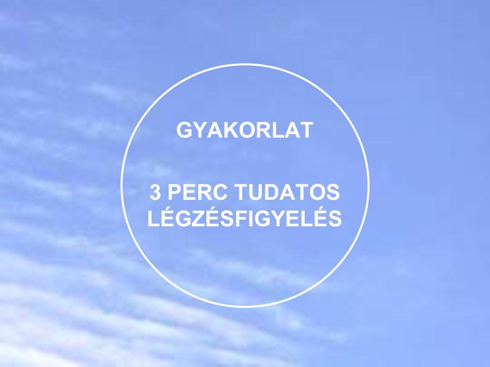 GYAKORLAT 3 PERC TUDATOS LÉGZÉSFIGYELÉS