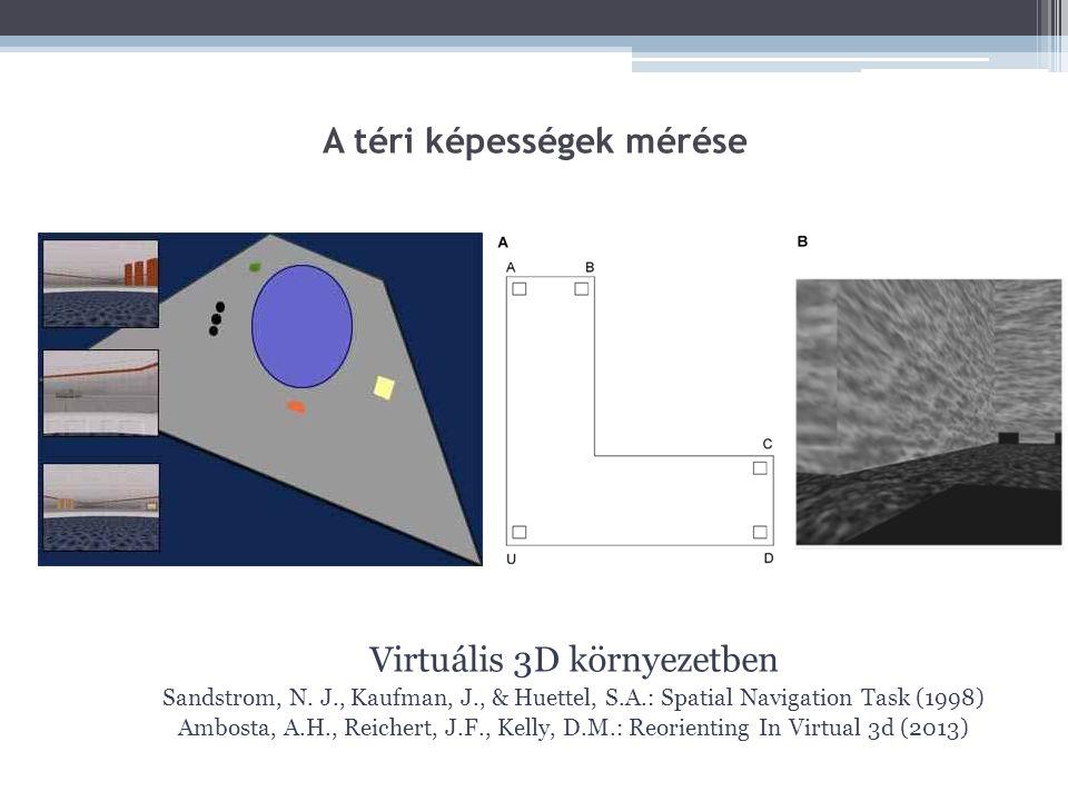A téri képességek mérése Virtuális 3D környezetben Sandstrom, N. J., Kaufman, J., & Huettel, S.A.: Spatial Navigation Task (1998) Ambosta, A.H., Reich