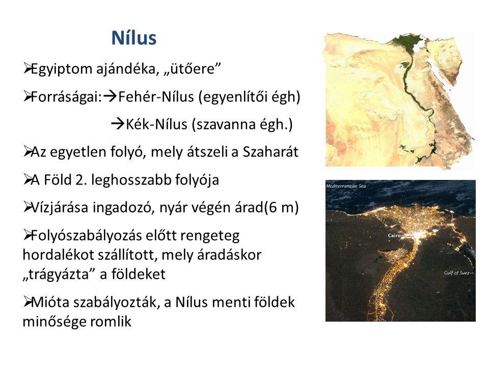 """Nílus  Egyiptom ajándéka, """"ütőere  Forráságai:  Fehér-Nílus (egyenlítői égh)  Kék-Nílus (szavanna égh.)  Az egyetlen folyó, mely átszeli a Szaharát  A Föld 2."""