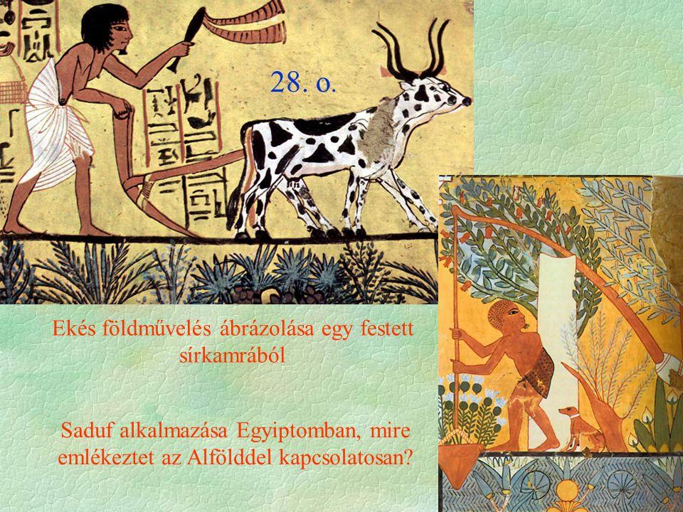 Ekés földművelés ábrázolása egy festett sírkamrából 28. o. Saduf alkalmazása Egyiptomban, mire emlékeztet az Alfölddel kapcsolatosan?