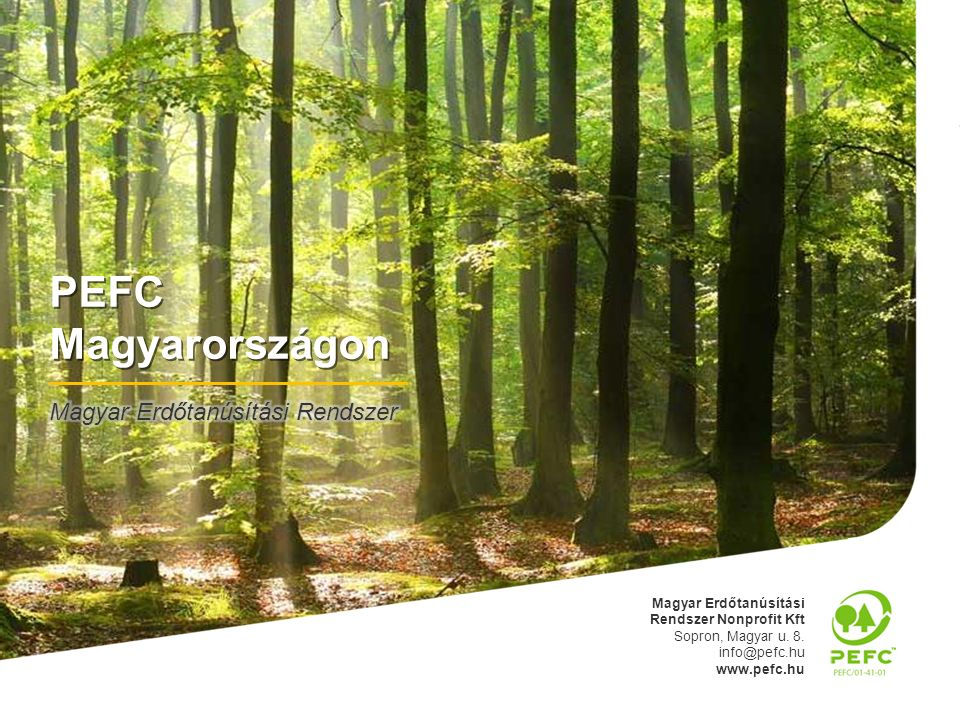 """Működés pénzügyi háttere 22 Nemzetközi kötelezettségek - """"előfizetési díj 5,2 mFt - """"fejlesztési díj 2,3 mFt Szabvány fenntartása - titkárság és adminisztráció6,0 mFt - szabvány felülvizsgálata1,5 mFt Erdőgazdálkodói csoport működése - titkárság és adminisztráció3,0 mFt - belső ellenőrzések3,0 mFt - auditálás6,0 mFt Teljes rendszer működése: 27 mFt – 7 mFt => 20 Ft/ha"""