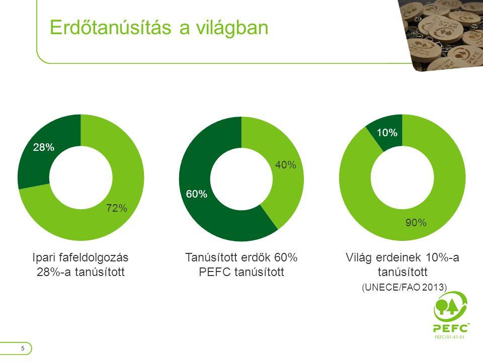 Erdőtanúsítás témakörei 16 1.Erdőgazdálkodói csoport5 2.