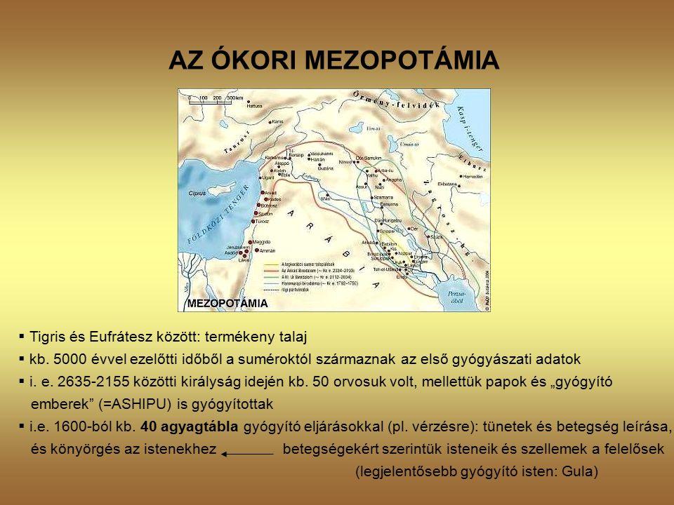 AZ ÓKORI MEZOPOTÁMIA  Tigris és Eufrátesz között: termékeny talaj  kb.