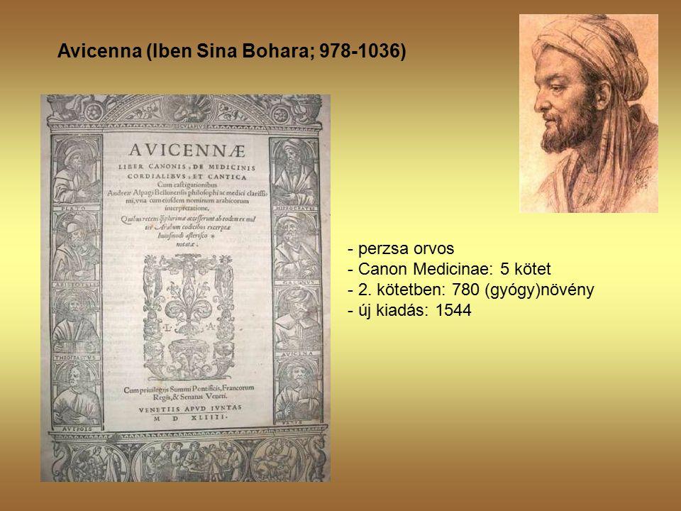 Avicenna (Iben Sina Bohara; 978-1036) - perzsa orvos - Canon Medicinae: 5 kötet - 2.